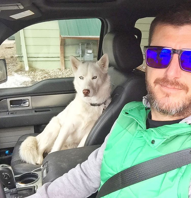 My fur beast co-driver, Yuki Block. She rules. #huskyismycodriver #furbeast #mansbestfriend #YukiTheDestroyer