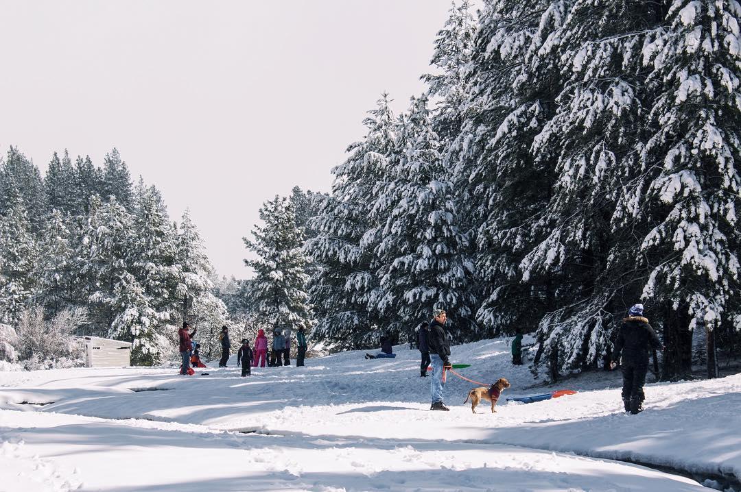 Snow Day ☃
