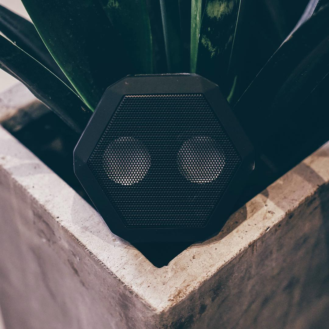 Rex Appeal.  #Boombotix  Link in profile ☝️ #Boombotix #audiophile #design #bluetoothspeaker