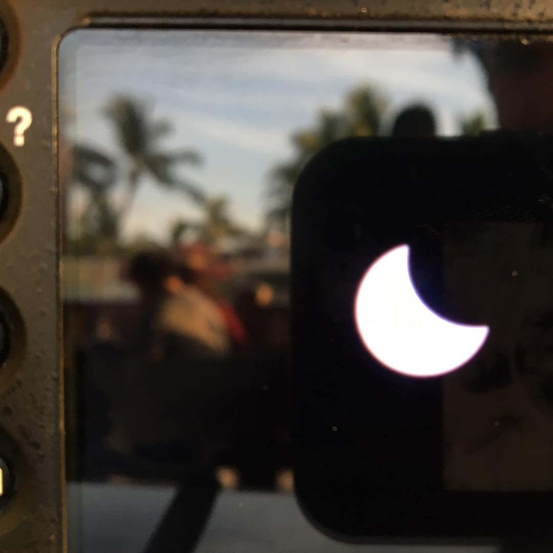 Only on big island!! Looking at solar eclipses chilling with palm trees!