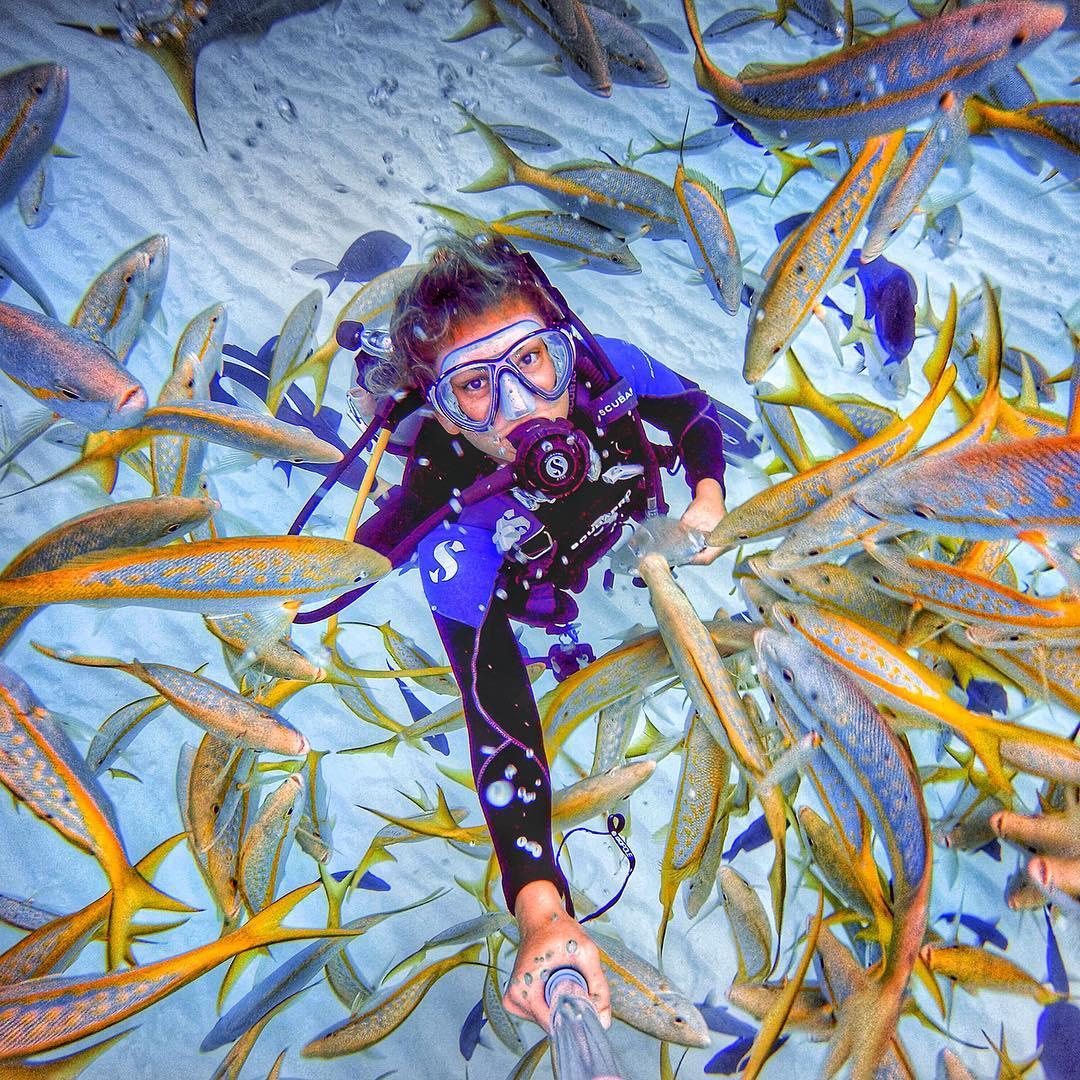 Location: Nassau, Bahamas Photo: @ameliaklonaris GoPro HERO4   GoPole Evo #gopro #gopole #gopoleevo #diving #bahamas