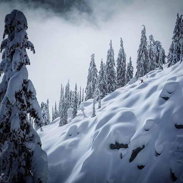Yea we like it when it snows too. Bill Backbauer in BC with the @bridgerbrigade .  Hope wherever you are for this storm blast this week that it just nukes a whole lot of that fluffy white good stuff. |