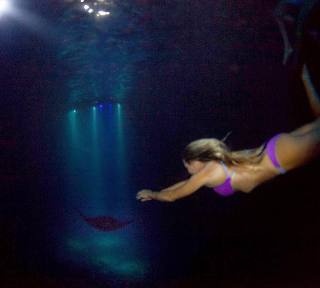 Night diving with Mantas!! @swellliving in our Boho Short and Boho Surf - Orchid/Napali - ♻️