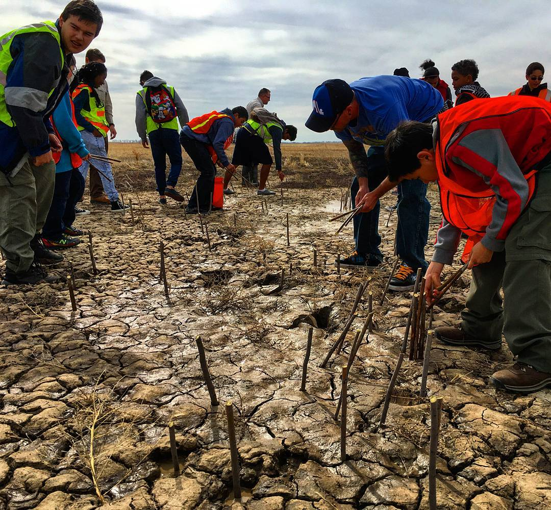 @sosoutreach #Denver youth helped eradicate invasive species at the Rocky #Mountain Arsenal National Wildlife Refuge! #volunteer #spreadthelove
