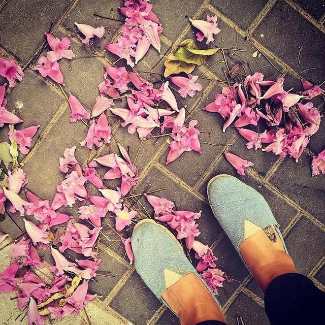 La Primavera a tus pies @shanibenshem