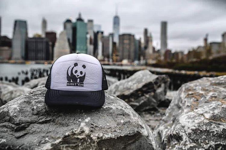 Shut'Em travels. Cute Panda por New York.  La gorra más linda que el paisaje. #shutem #clothing #newyork #ny #outfit #love #caps #new #season