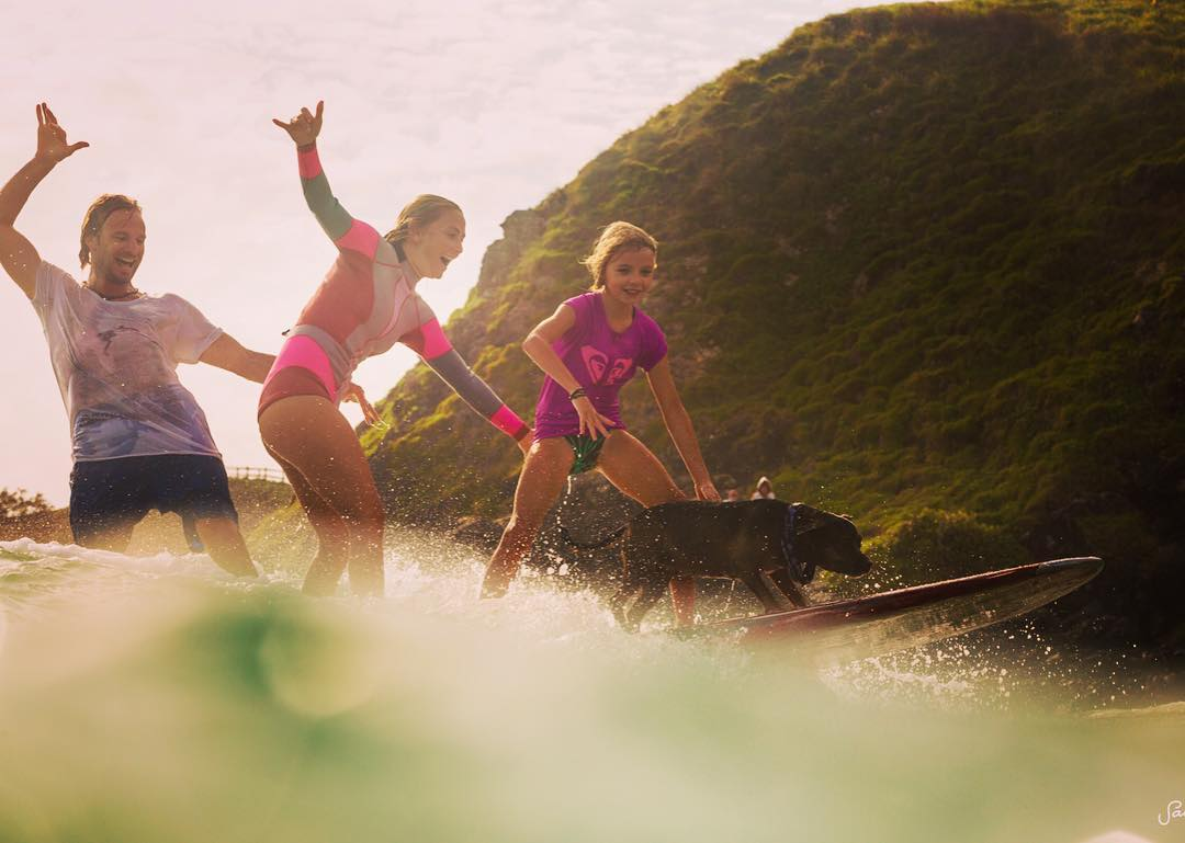 Got to attend a board meeting today with Champion Australian surf dog Pepper and his whole family! @mojosurf