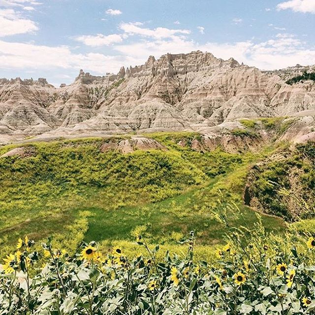 S P R I N G  D U N  S P R U N G our friend @scottly made it to @badlandsnps to see the first day of spring - hope you all got out and celebrated a #radparks today. #findyourpark #springfever #outdoorphotography #badlands #parkchamps