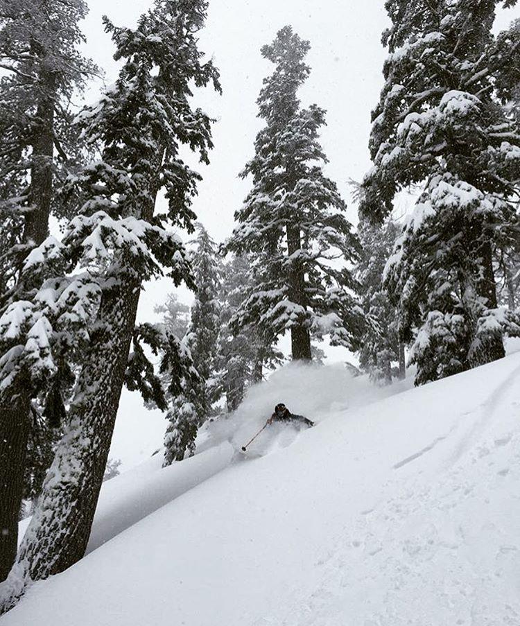Pow day in Tahoe! Skier: @elysesaugstad PC: @jeremywbenson  #embracethestorm | #flylowgear