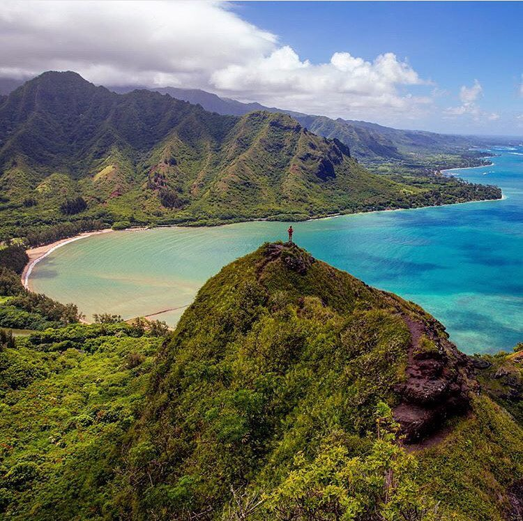We don't know about you, but we've got Hawaii on the brain! (Happy Hump Day Travelers)  What's your favorite island?  PC