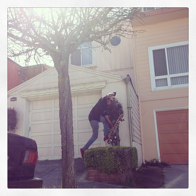 @aftb42 leaping bushes in a single bound! #calibertrucks