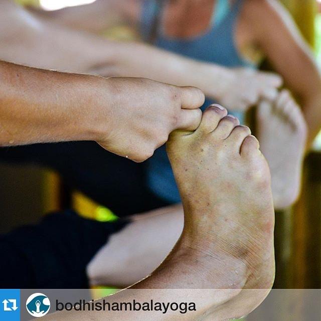 "#Repost @bodhishambalayoga・・・""The posture begins when you want to leave it"" - BKS Iyengar  Just breathe.  #practiceandalliscoming #NamasteFriday"