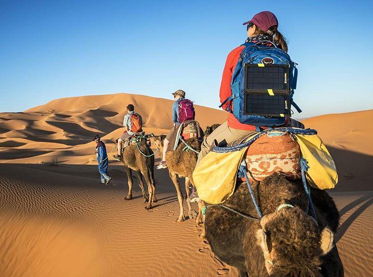 Camels and panels. #GetOutStayOut  Photo: @danpatitucci