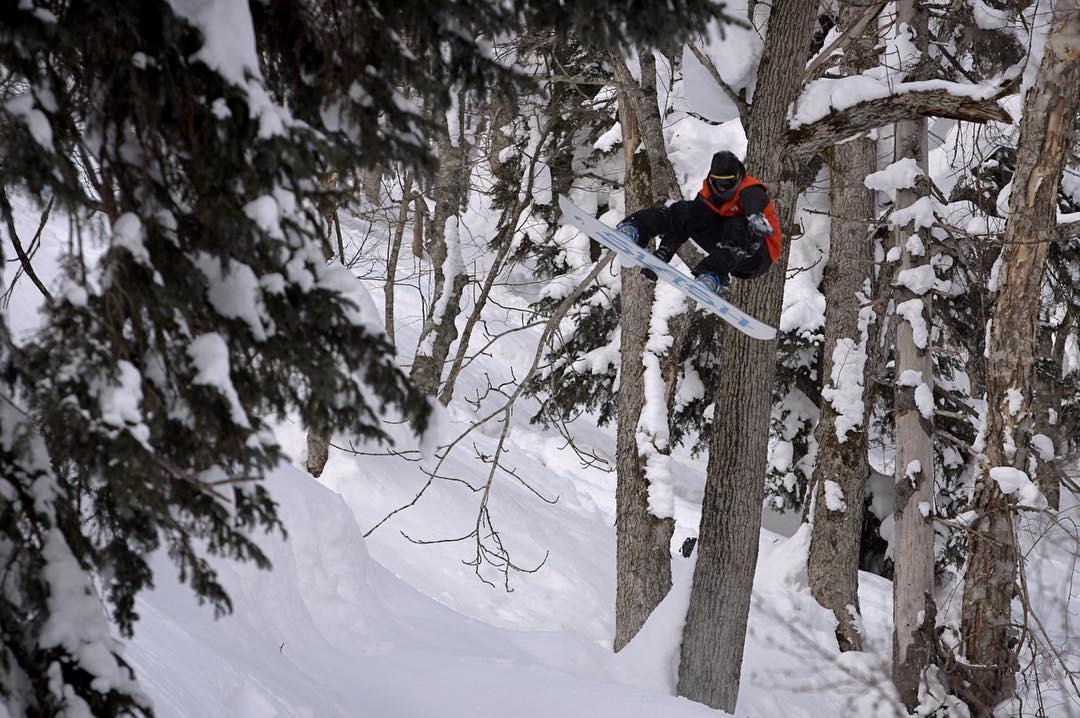 @gigiruef popping through the trees.