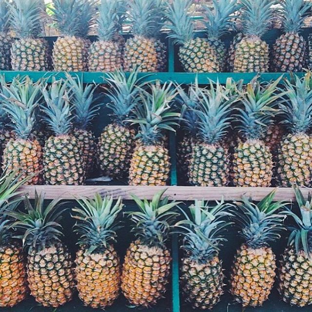 Pineapples. One of many foods of the gods that we can't get enough of.  #fuel #eatright #fresh #pineapples