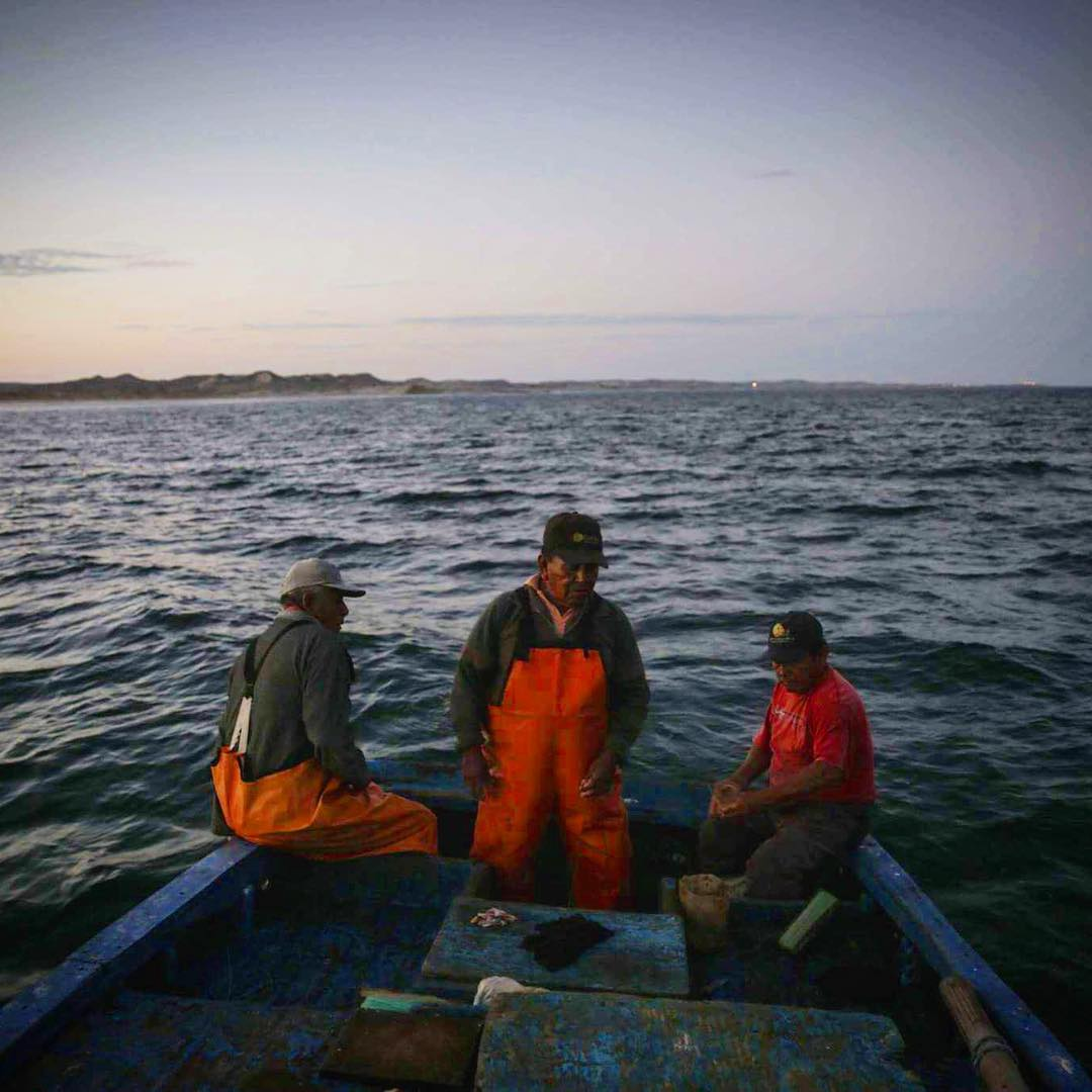 Early morning with @lobitos_cinema_project with los pescadores de #Lobitos. It is predicted that by 2048 overfishing will take seafood off the menu and these artisanal fishermen will loose their only source of income and coastal communities across the...