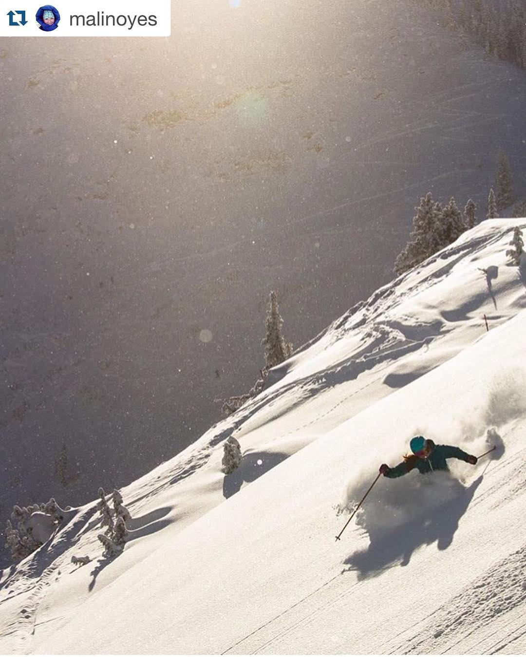 some alta magic for your monday // SP athlete @malinoyes //