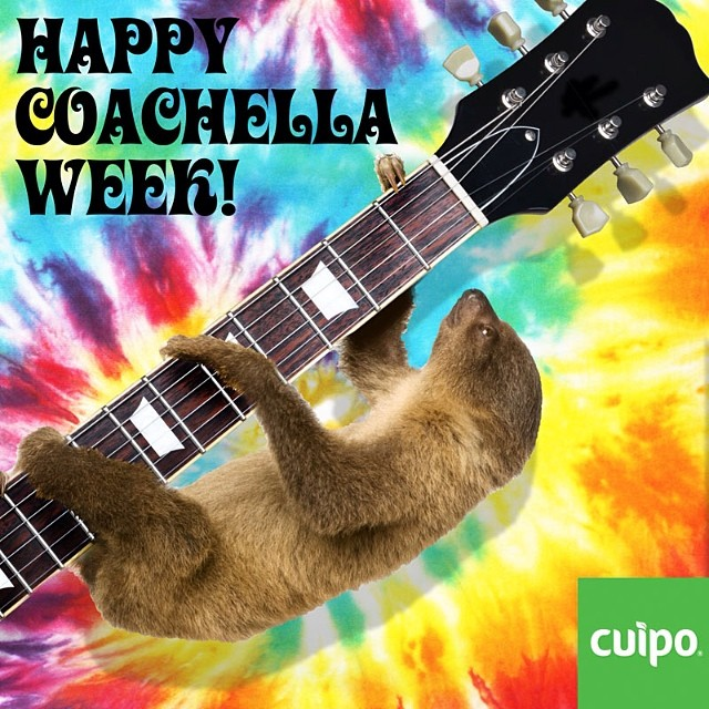 COACHELLA!!!! #CUIPO #SAVERAINFOREST