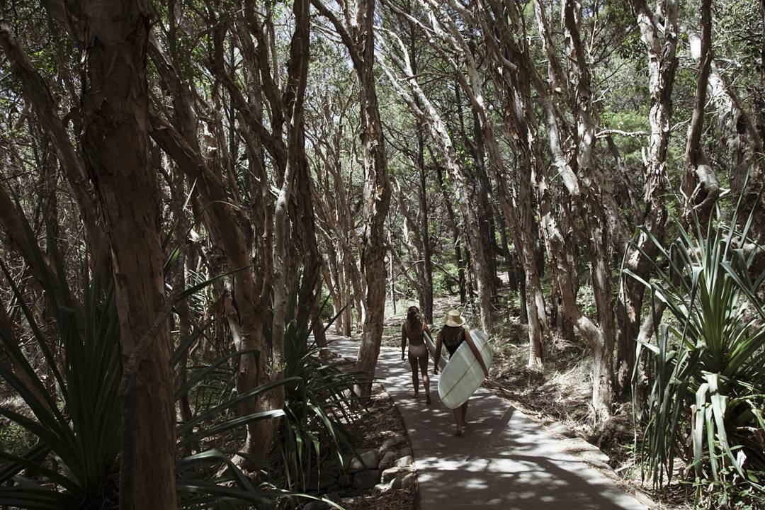 @Rachfleming and @KarinaRozunko walking through the Eucalyptus Forest to (Guess Where) #seeababes #seeainoz #myseealife