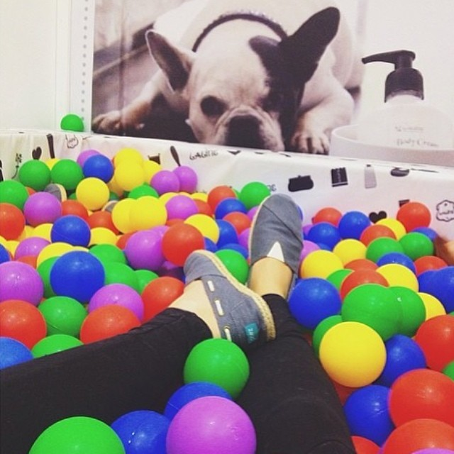 Hello Friday, we've been waiting for you. Regram: @ariel0sh #Paezselfie #FridayFunday #Ballpool #dog #Paez #PaezShoes #WeColor