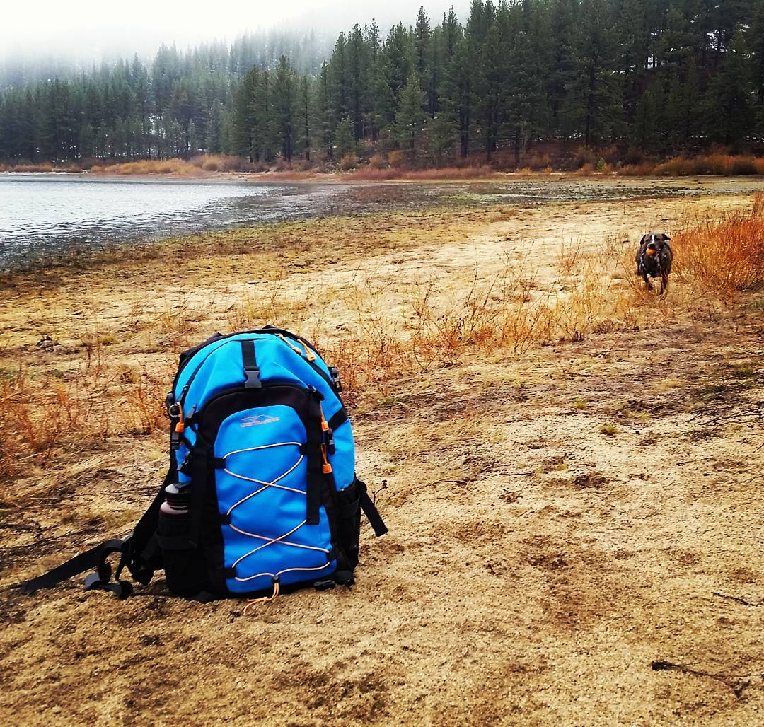 Send it Sunday in the rain for the pup. #getoutside #sofast #sendit #pups #lakes #hiking #renotahoe #tahoesnaps #graniterocx #outdoorsrocx