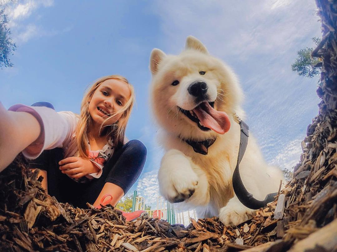 Look, Emma + @samoyedpuck found our winners @cerinadagostini + @joshdarakdjian!  Don't worry, we're not done celebrating #NationalPetDay just yet! For a chance to win a #GoProPet swag bag (#HERO4Session, Fetch Mount + The Handler) enter our #GoProPet...