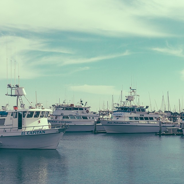 San Diego #lovematuse