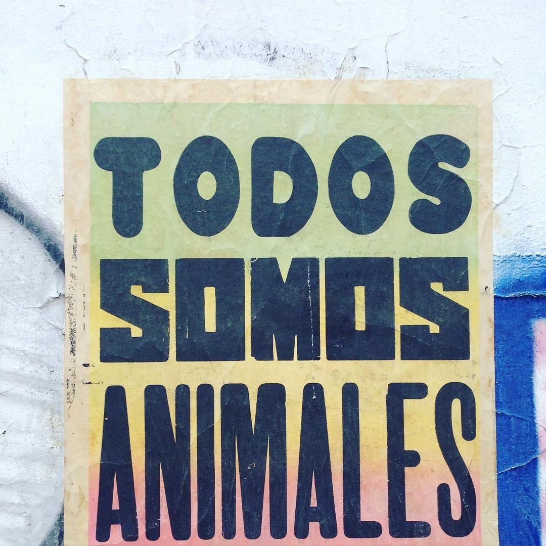 TODOS #pasteup #palermo #todossomosanimales