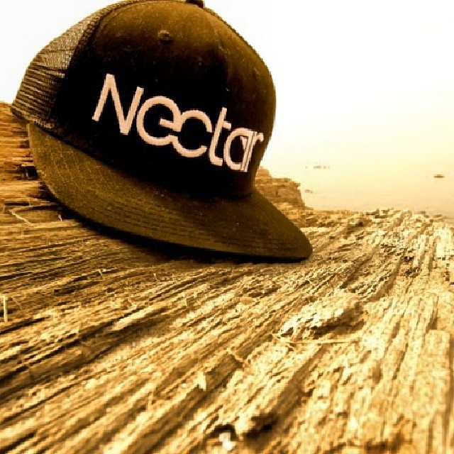 Snapback hats will be back in stock next week! || #nectarshades #nectarlife photo @b_diffphotos