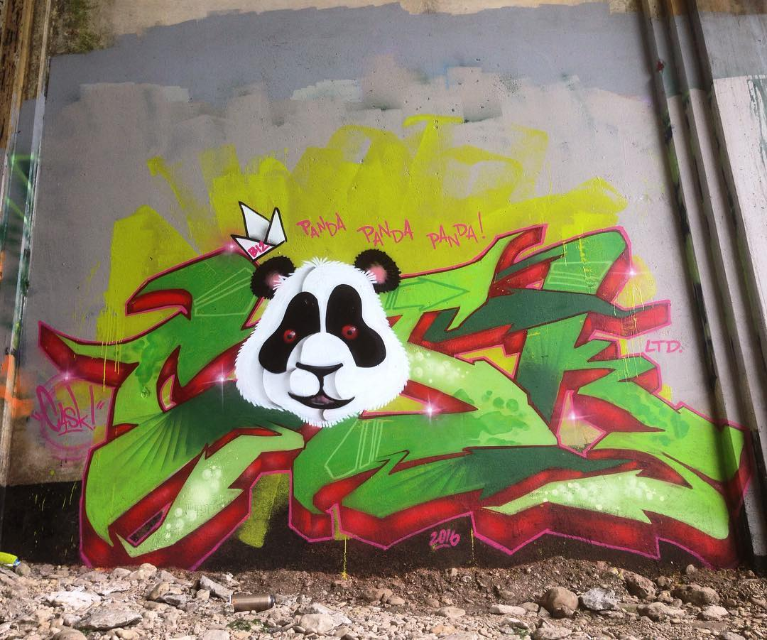 "@killahcaskone #Ltd #lfc #bdc • • ""Panda Panda Panda"" • • #austintx #texas #tx #spratx #graffiti #grafite #graff #streetart #panda #caskone #cask"