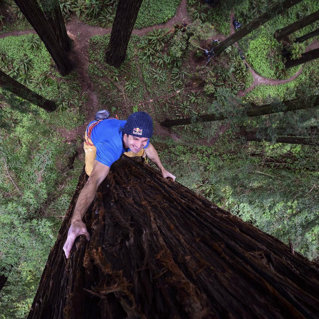 Tree hugger.