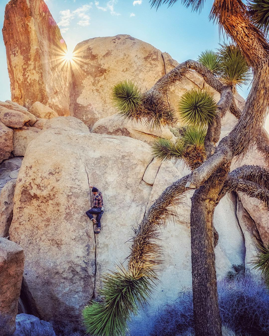 1% ambassador @jeffjohnson_beyondandback navigating a crack in Joshua Tree.