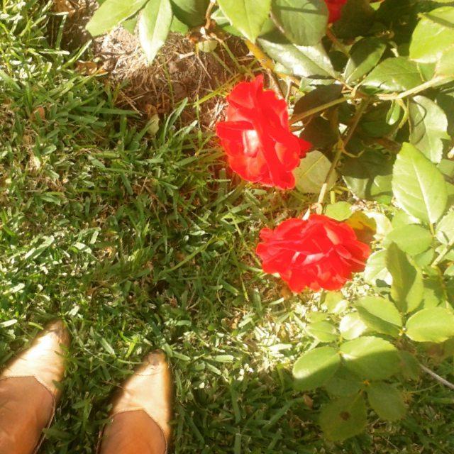 Día soleado en pascua #pascuas