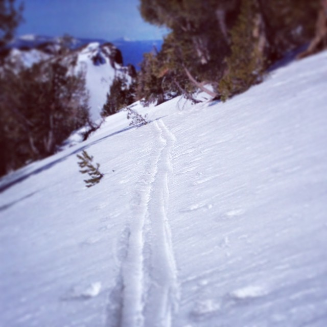 Skin track. Mt. Rose wilderness. #whomakesyourskis #praxisbc #skiercrafted #getrad