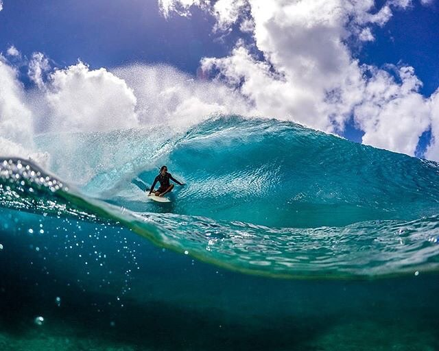 Perking up your feed with this sick shot from Activist @sf_photos_hawaii! #inspiredboardshorts