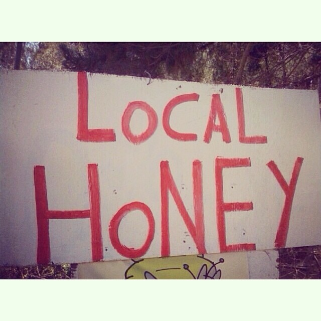 The original #localhoney sign in #halfmoonbay #california. I drove past this sign so many times and then realized it was the perfect name for the business. #smallbusiness #inspiration #coastside #oceanair #spring #sunshine #swimwear  #localhoneydesigns...