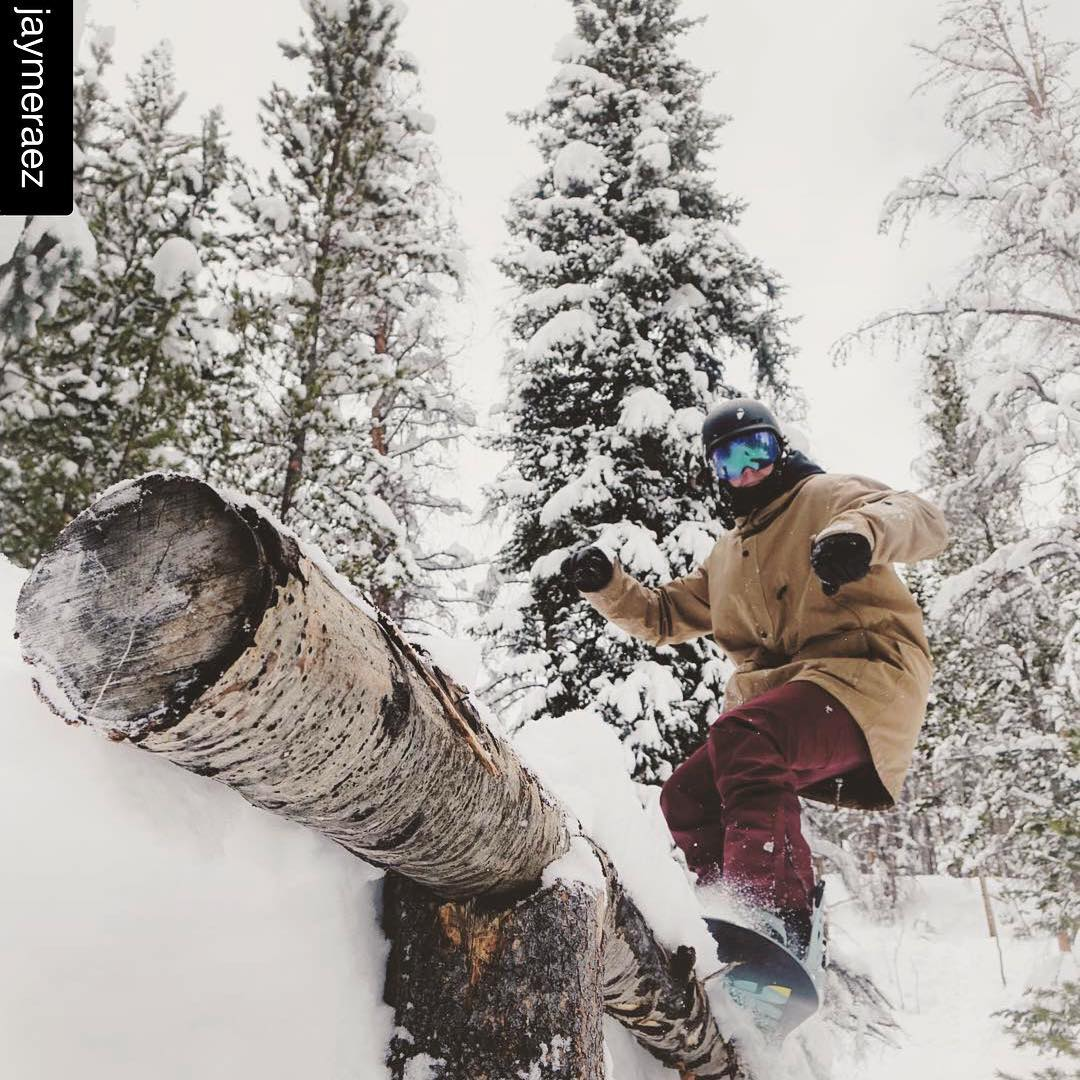#Repost @jaymeraez #logslide  Between the pines