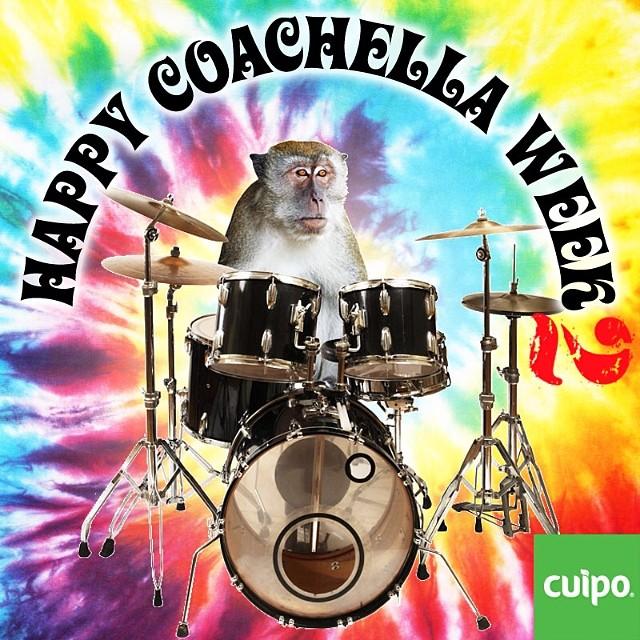 Are you ready to rock?!?!?!? #cuipo #coachella #saverainforest