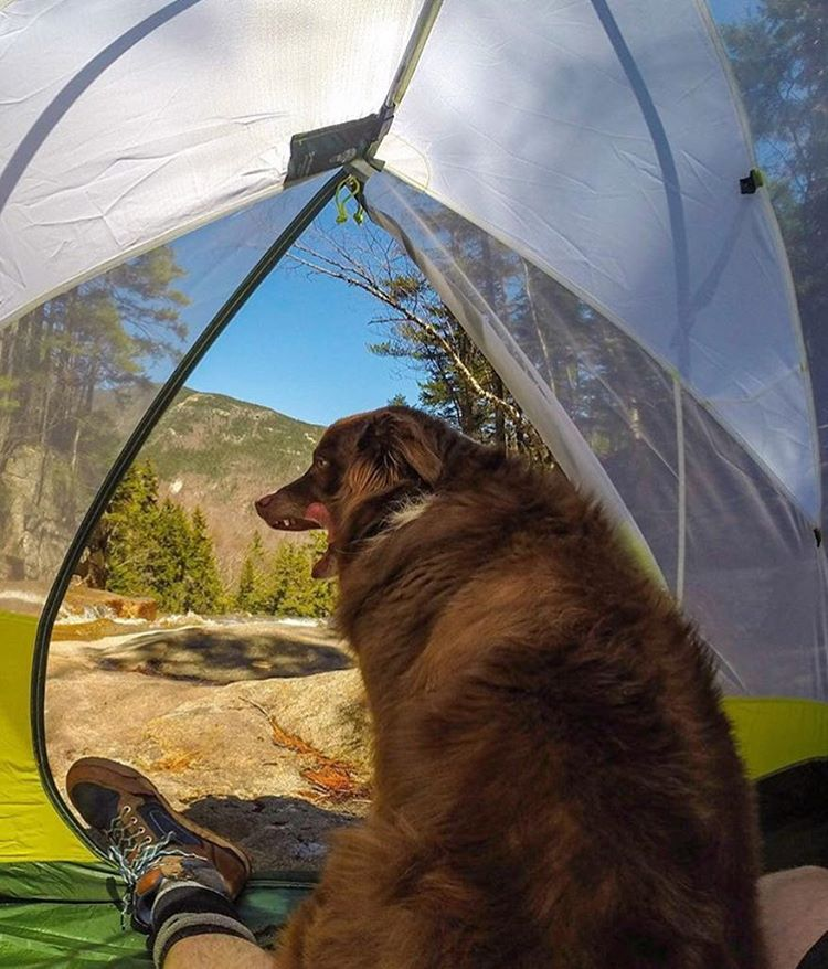 @actively_epic's weekend outdoors with man's best friends
