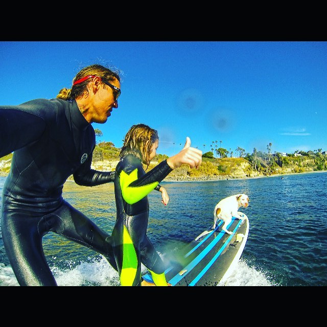 Surf Team Rider and Brand Ambassador @mattallenhi having a fun lil surf with his daughter Moorea and his pup Charger at Swamis, wearing the Floatable Argonaut Monix in Black & Red / Fire Chrome Polarized Lens @hovensurf @hovenhawaii @mauisurfacademy ...