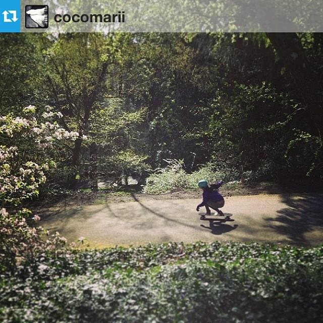Serene and beautiful shot of Marisa Nunez #Repost from @cocomarii #nature #peaceful #skate