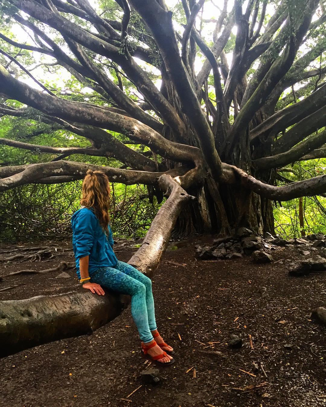 Quiet talk with an 80 year old Banyan Tree #wise #roadtohana #maui #hawaii #aloha #hiking