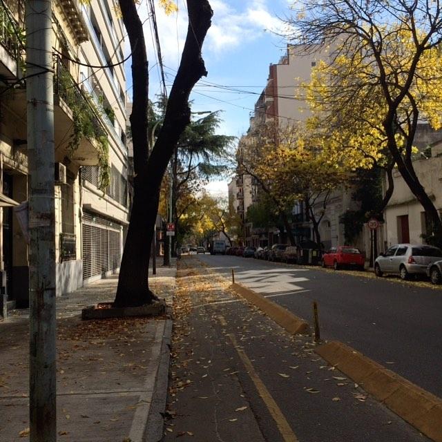 #otoño #bici #bike lo importante es el camino y nunca dejar de pedalear, hacia adelante! #Pitimini