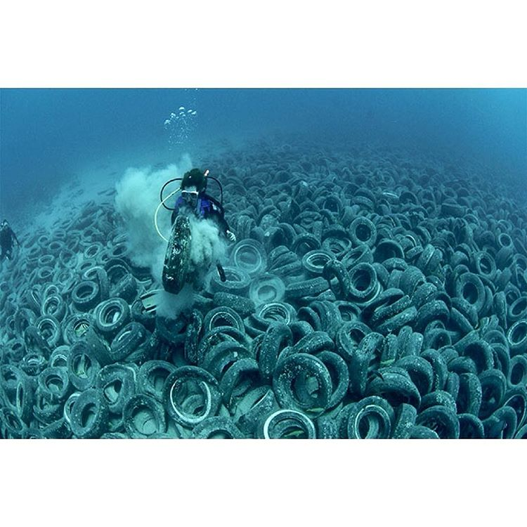 This is off the coast of Florida, where over 2 million tires were dropped in the early 1970's. The intention was for the used tires to become artificial reefs providing new habitat for fish and other marine life. Unfortunately, the plan failed and...