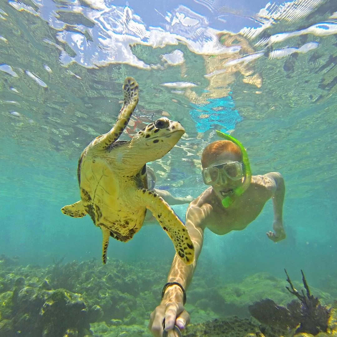 @matttheginge snorkeling in the Florida Keys. GoPro HERO4 | GoPole Evo #gopro #gopole #gopoleevo #snorkeling #floridakeys #