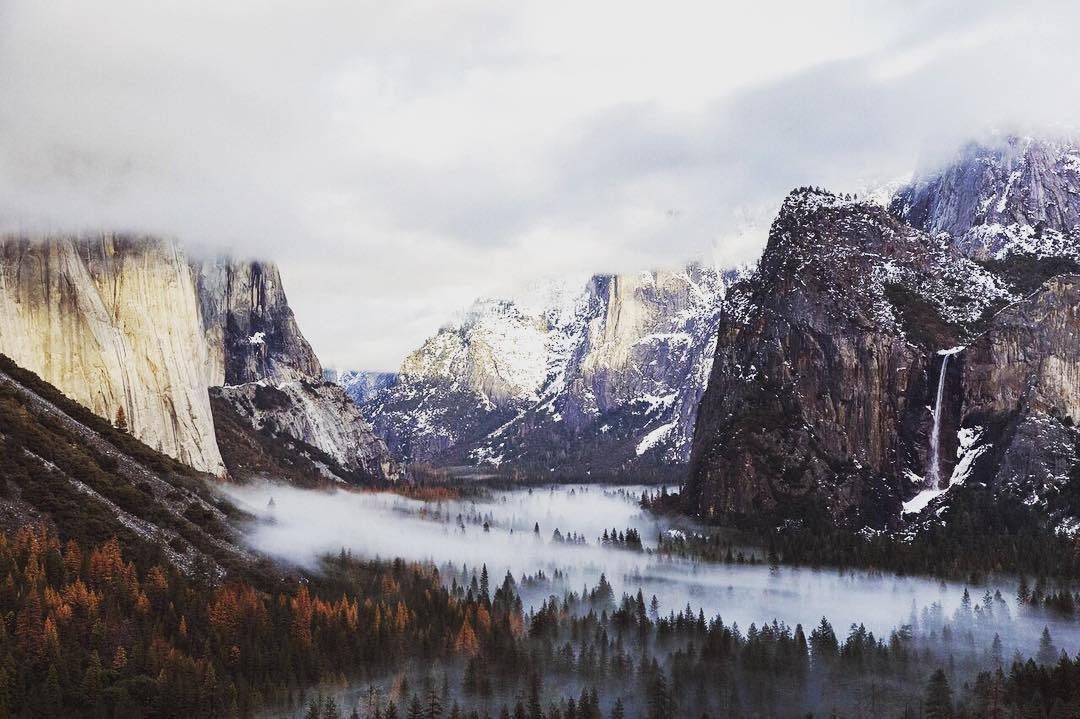 "#RADPARKS TAKEOVER @western.haikus got some things to share -> ""Wintertime in Yosemite. It brings a new and interesting perspective, low lying fog creeps through the towering pines swallowing the valley floor in the early morning light. The falls creep..."