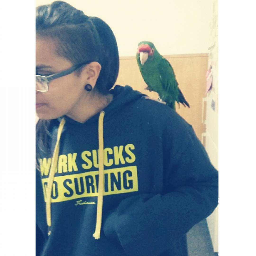 Tengo mi amiguito, ahora ya puedo ser #pirata  #rocco #parrot #bird #pirat #pet #wings #feathers #green #lesbian #friend #loro #amigo #mascota #instapic #instamoment #instagood #instasize