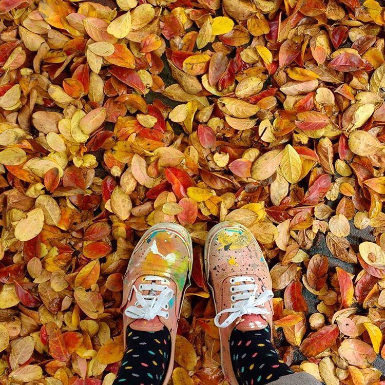 Arte y otoño.