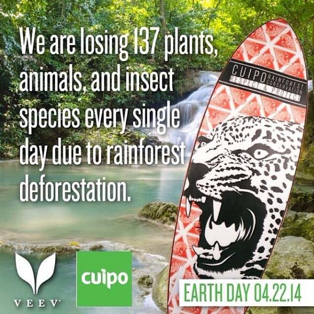 Follow @veev and find out how you can win a new Cuipo surfboard. #cuipo #veev #saverainforest