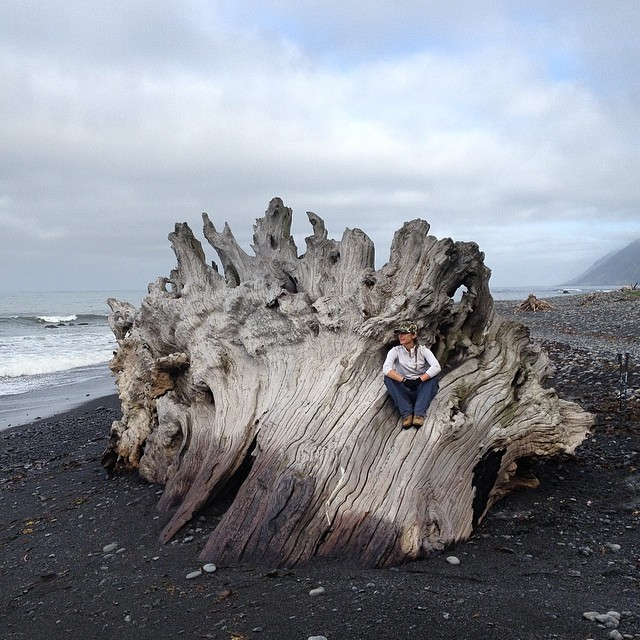 So much awesome driftwood on #thelostcoast - but couldn't take this one home #wild #california #exploremore #backpacking #getmovinghavefun #withoutwalls #offthegrid #beach #treasures #redwood